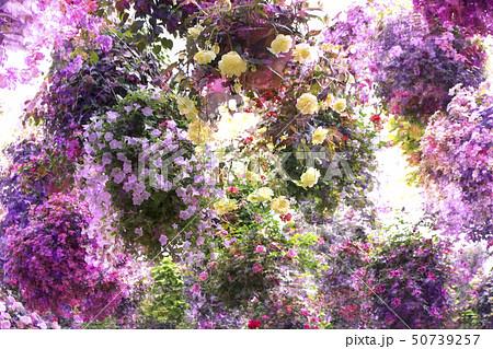 お花、花束、ブーケ、プランターをイメージしたイラストです。 50739257