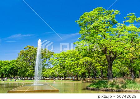 東京 春の代々木公園 50742028