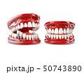 Tooth human implant. Dental concept 3d illustration 50743890