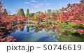 永観堂 50746619