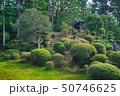 東福寺の日本庭園 50746625