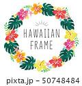 ハイビスカスのハワイアンフレーム 50748484