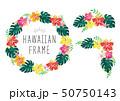 水彩ハイビスカスのハワイアンフレームセット 50750143