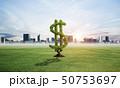 グリーン 緑色 野原の写真 50753697