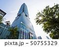 Taipei 101 Skyscraper in Taipei, TAIWAN. 50755329