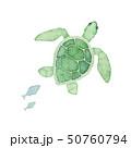 夏 海 ウミガメ 水彩 イラスト 50760794