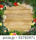 夏 フレーム トロピカルのイラスト 50760971