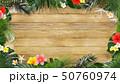 夏 フレーム トロピカルのイラスト 50760974