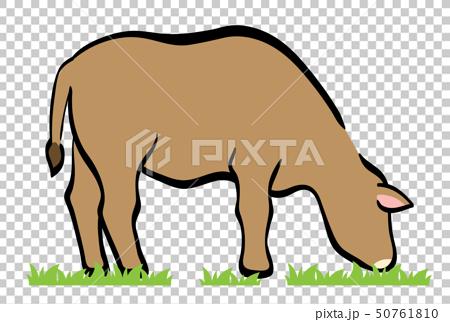 牛 50761810