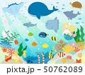 かわいい海の生き物のイラスト 50762089
