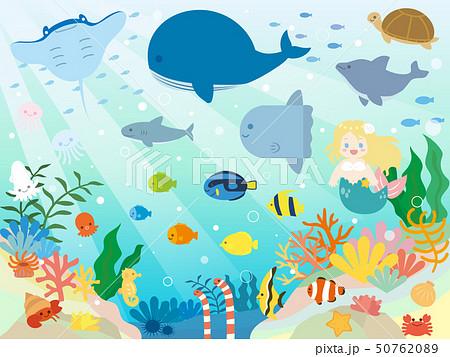 かわいい海の生き物のイラストのイラスト素材 5076