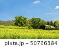 信州 長野県飯山市菜の花公園の野外ステージ 50766384