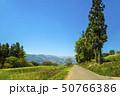 信州 長野県飯山市菜の花公園 50766386