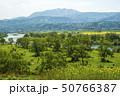 信州 長野県飯山市菜の花公園からみる千曲川と斑尾高原 50766387
