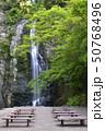 箕面大滝 新緑(大阪府箕面市) 50768496