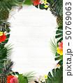 背景-海-夏-木目-白木-モンステラ-プルメリア-ハイビスカス-パイナップル-トロピカル-フレーム 50769063