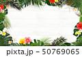 背景-海-夏-木目-白木-モンステラ-プルメリア-ハイビスカス-パイナップル-トロピカル-フレーム 50769065