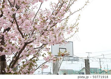 栃木県さくら市 氏家駅のバスケットゴール 50771918