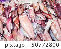 Assortment of fresh squids on counter 50772800