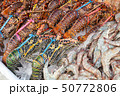 Catch of lobsters and shrimps 50772806