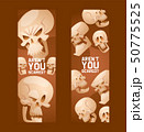 Skull pattern vector dead head crossbones human tattoo illustration thick-skulled set of horror 50775525