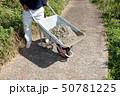 セメント工事 50781225