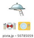 お皿 皿 作法のイラスト 50785059