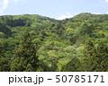新緑・山 50785171