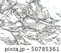 背景素材 50785361