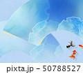 背景-和-和風-和柄-和紙-金魚-夏-祭り-扇-水色-夏休み 50788527