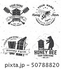 Set of Honey bee farm badge. Vector. Concept for shirt, stamp or tee. Vintage typography design with 50788820