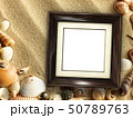 Picture frame on shells and sand background 50789763