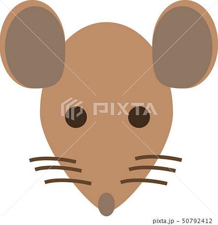 ネズミ 50792412