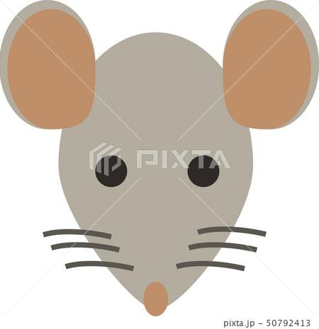 ネズミ 50792413