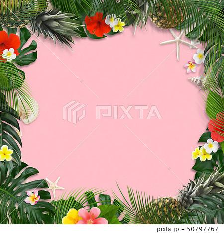 背景-海-夏-モンステラ-プルメリア-ハイビスカス-パイナップル-トロピカル-ピンク-フレーム 50797767