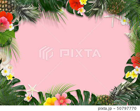 背景-海-夏-モンステラ-プルメリア-ハイビスカス-パイナップル-トロピカル-ピンク-フレーム 50797770