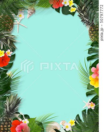 背景-海-夏-モンステラ-プルメリア-ハイビスカス-パイナップル-トロピカル-フレーム 50797772