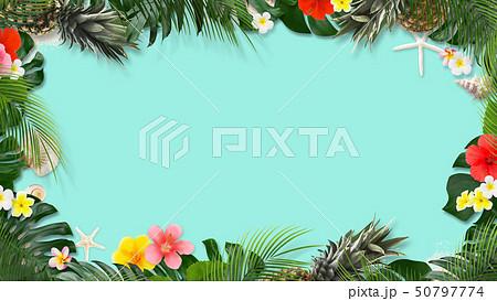 背景-海-夏-モンステラ-プルメリア-ハイビスカス-パイナップル-トロピカル-フレーム 50797774