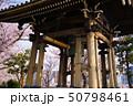 除夜の鐘と桜 50798461