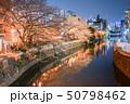 帷子川の夜桜と横浜の街並み 50798462