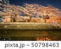 帷子川の夜桜と横浜の街並み 50798463