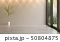 Interior empty room 3D rendering 50804875