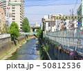 神田川 さかえ通り商店街 川の写真 50812536