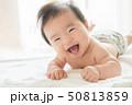 赤ちゃん 男の子 乳児 乳幼児 子育て 50813859