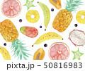 夏 背景 テキスタイル トロピカルフルーツ 水彩 イラスト 50816983