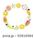 夏 フレーム トロピカルフルーツ 水彩 イラスト 50816984
