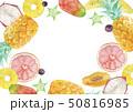 夏 背景 フレーム トロピカルフルーツ 水彩 イラスト 50816985