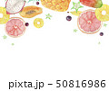 夏 背景 フレーム トロピカルフルーツ 水彩 イラスト 50816986