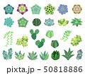 多肉植物のイラスト寄せ植えパーツセット 50818886