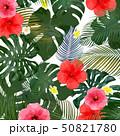 モンステラ プルメリア 葉のイラスト 50821780